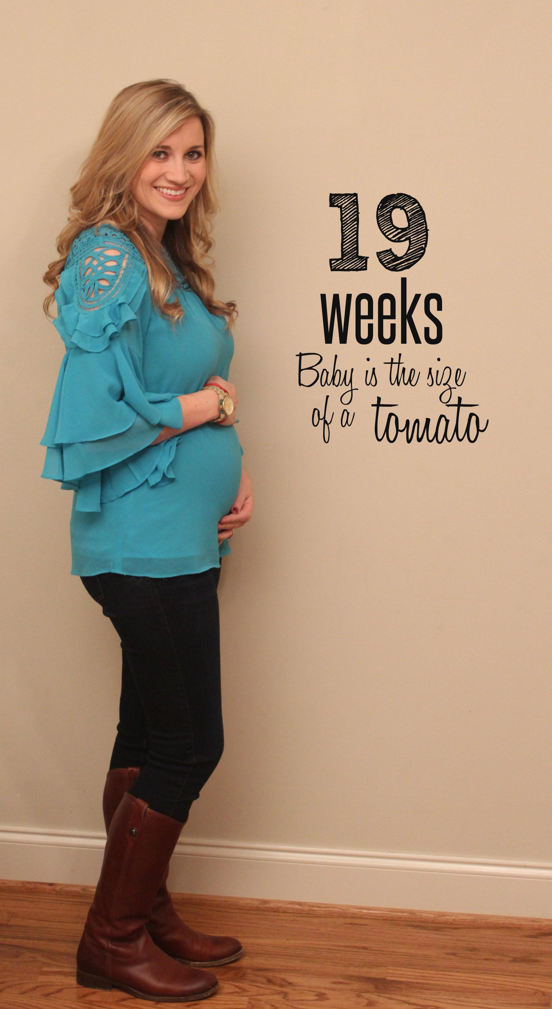 19 weeks pregnant milf creampied 2